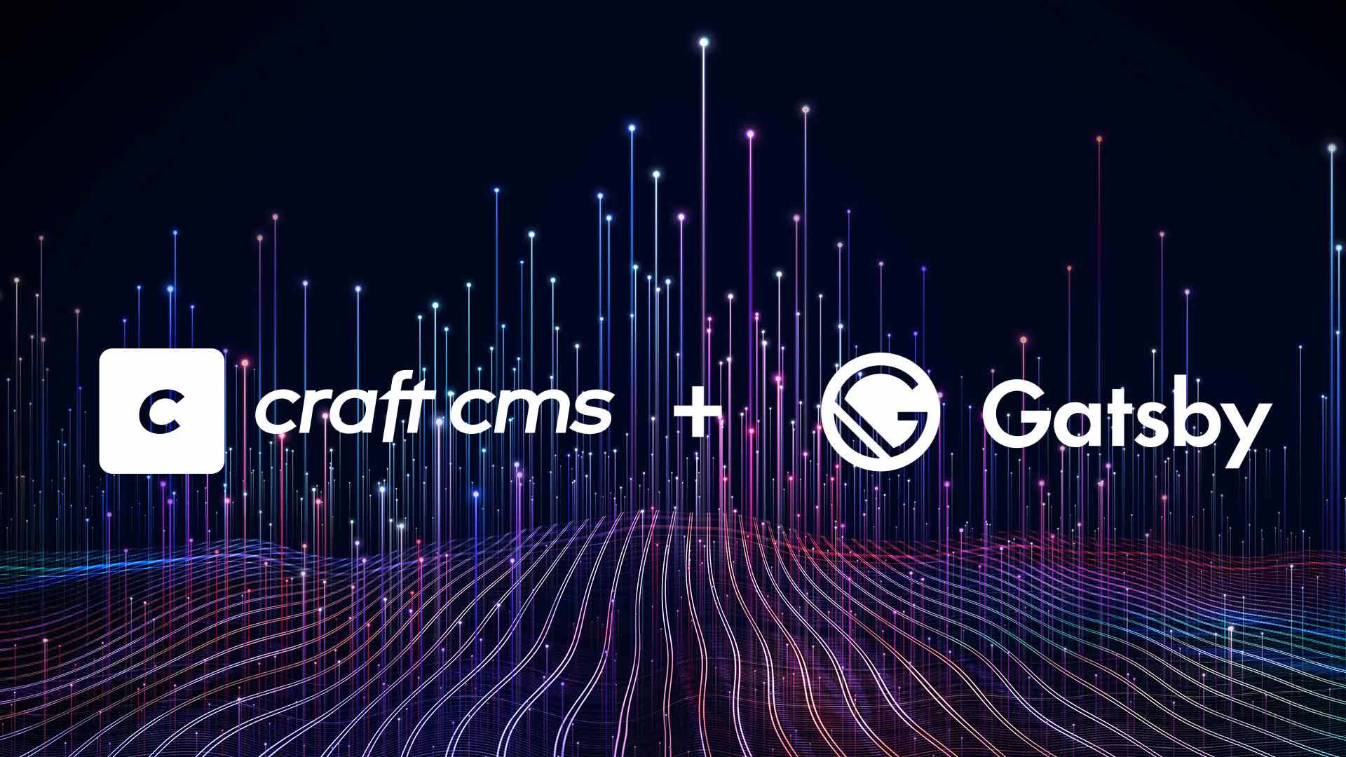 How to make a headless website with Craft CMS