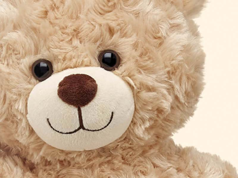 Build-a-Bear Landing Page Web Design