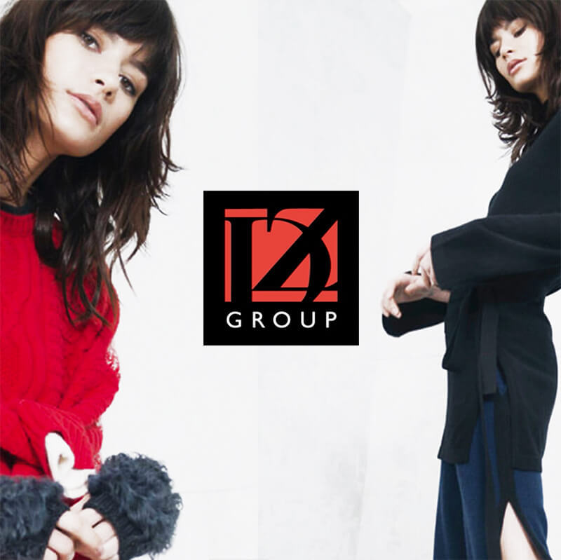 DZ Group Craft CMS Website Build